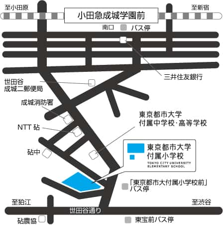 都市大小学校地図