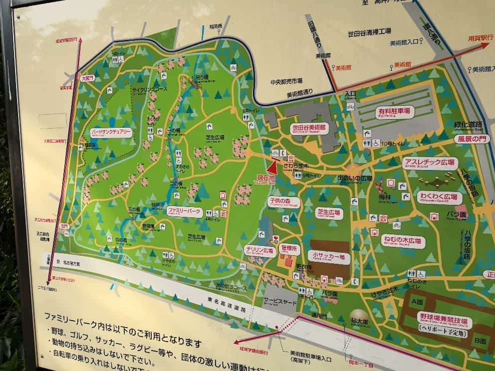 砧公園地図