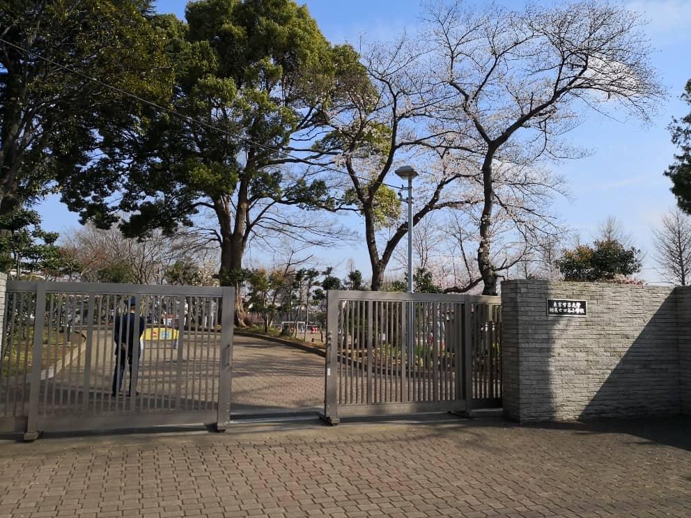 学芸大学附属世田谷小学校