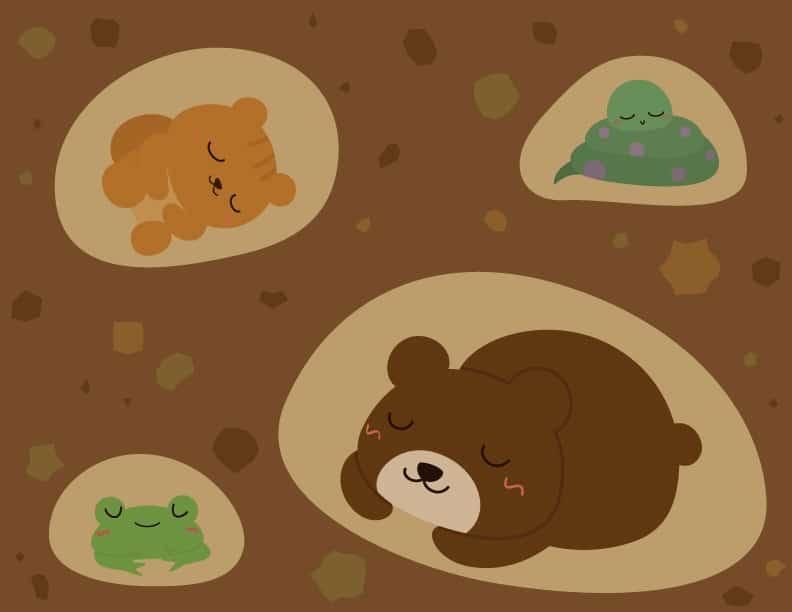する 動物 冬眠