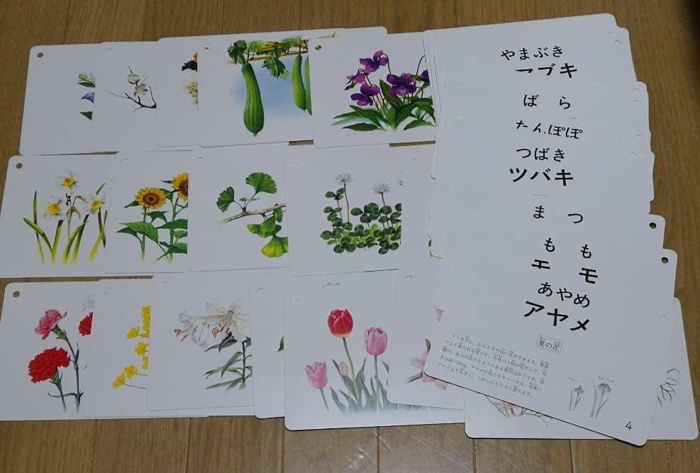 花と木カード くもん出版