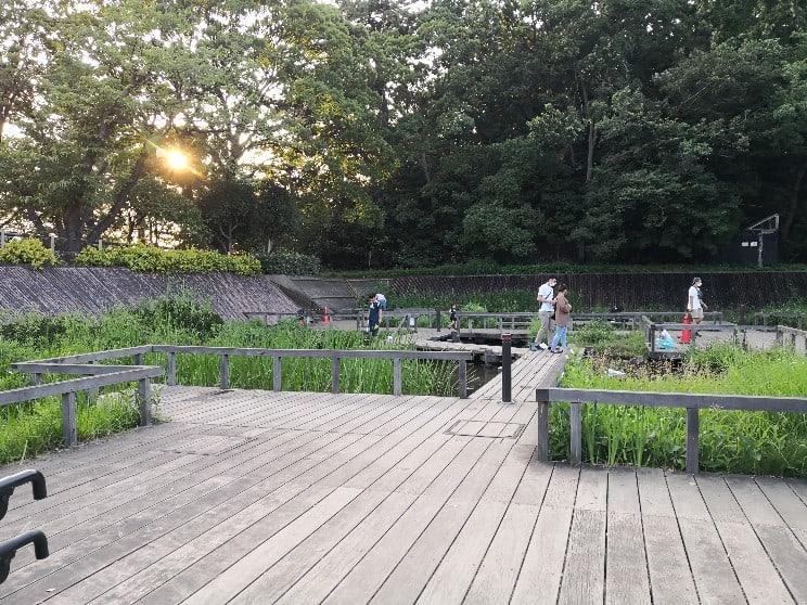 多摩川台公園3