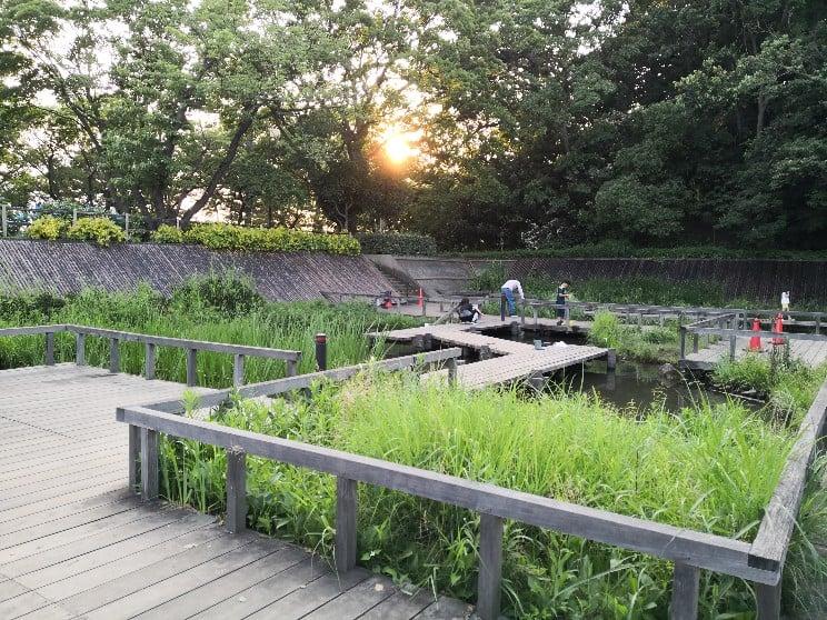 多摩川台公園5